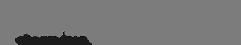 PerfectEagle_Logo_Druck-1